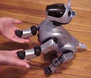 Sony AIBO Review – The Gadgeteer