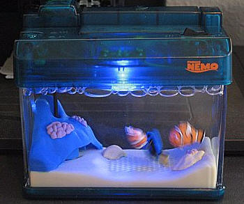 Tomy microaqua dory edition aquarium review the gadgeteer for Finding dory fish tank