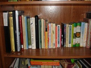 Can you find the Lifebook, Mini, and Centro in the book case?