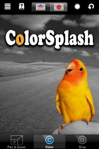 colorsplash-logo-1