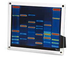 thinkgeek_dna_portrait