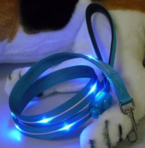 nightsafe flashing dog leash