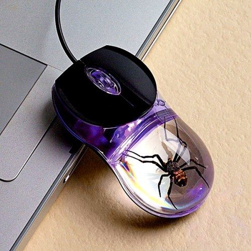 smithsonian spider mouse