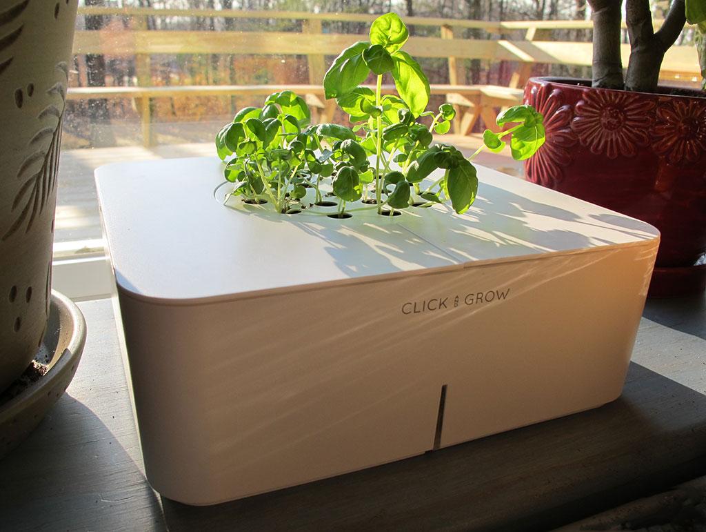 click grow smartpot flowerpot review the gadgeteer. Black Bedroom Furniture Sets. Home Design Ideas