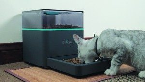 pintofeed-feeder-1
