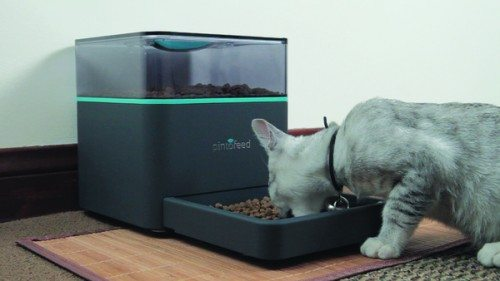 pintofeed feeder 1