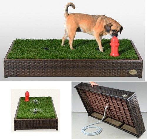 porch-potty-litter-box-for-dogs