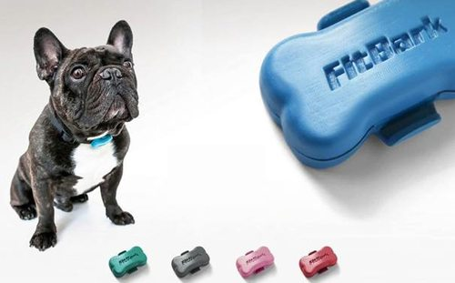 fitbark-activity-monitor
