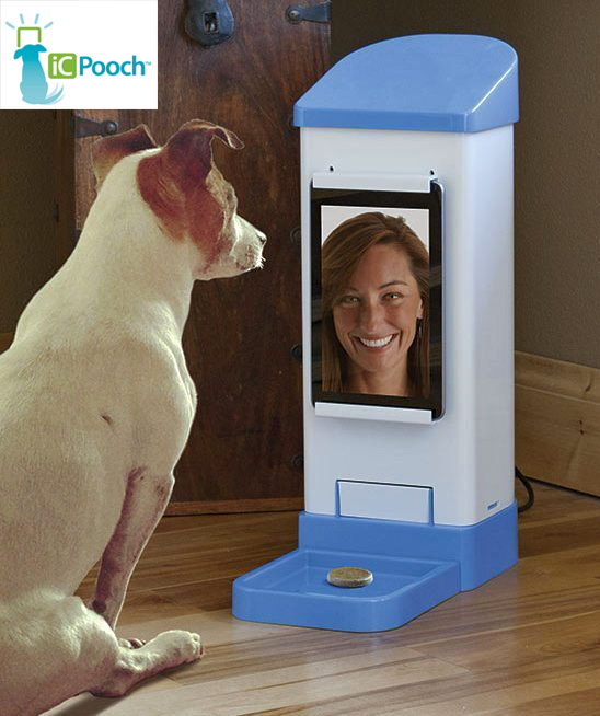icpooch is a video chat treat dispensing soother for your
