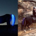 tail-lights-safety-lights-for-horses