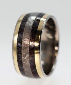 dinosaur-bone-meteorite-ring