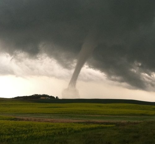 Tornado Avatar