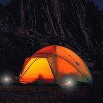 stakelight-tent-poles-2