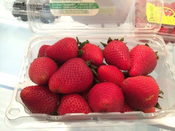 Berry Breeze Strawberry