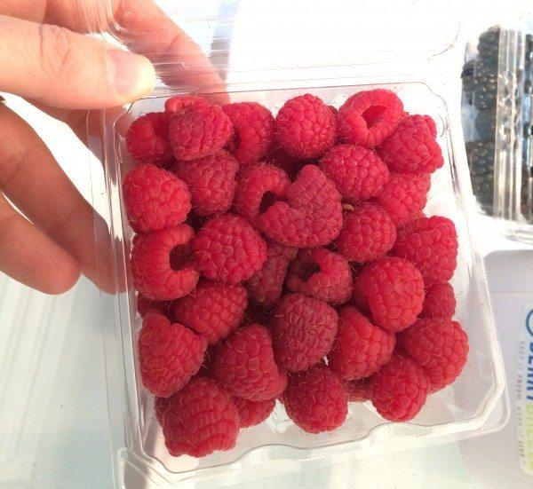Berry Breeze Raspberries