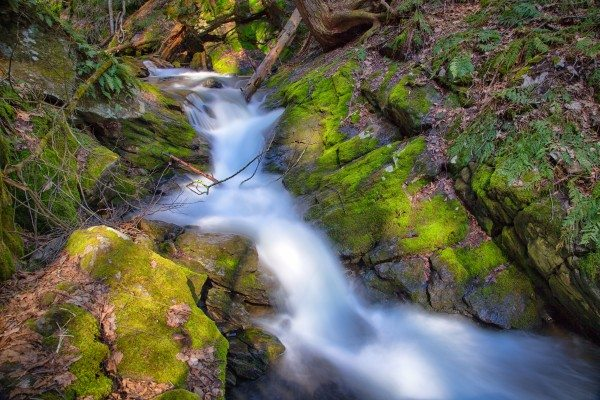 BT-X3-ND_filters-13