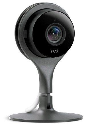 nestcam