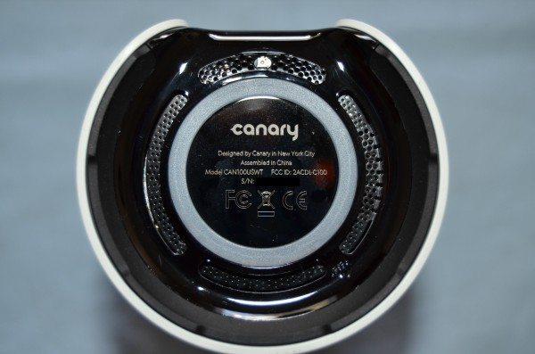 canary-canary-4