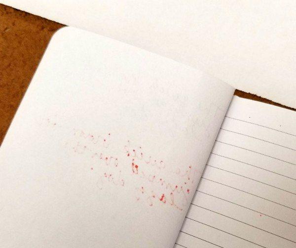 bullandstash-notebook-21