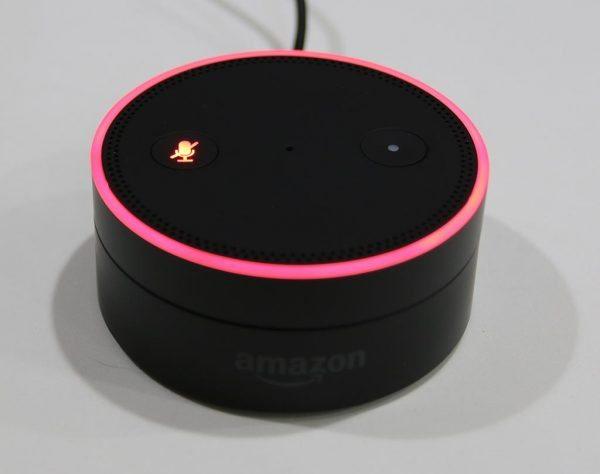 amazon-echo-dot-100