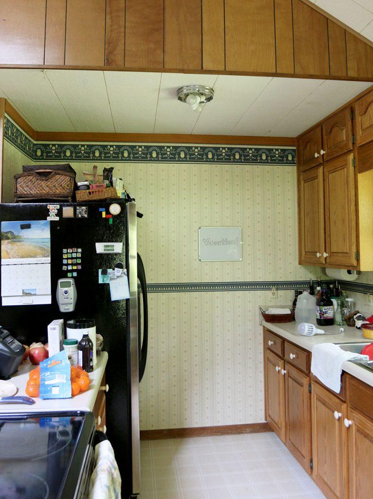 Zapplight indoor bug zapper light bulb review – The Gadgeteer