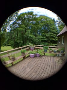 With fish eye lens