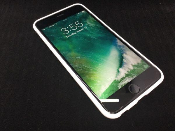 Terrapin iPhone case-06
