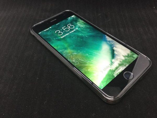 Terrapin iPhone case-07