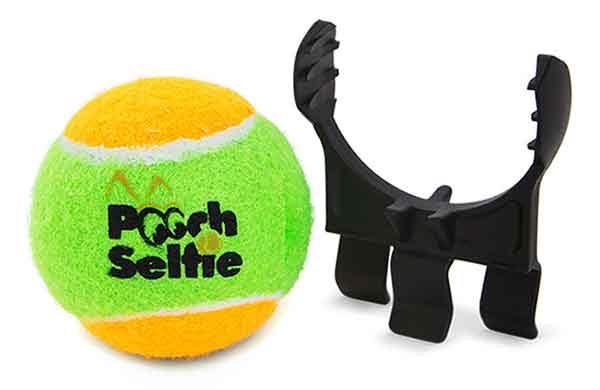 The Pooch Patio Reviews | Patio Design Ideas