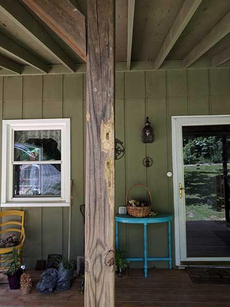 woodpecker vs house 1