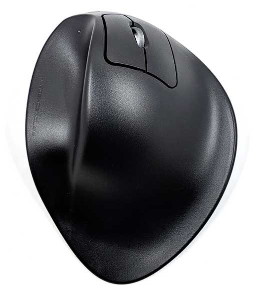 handshoe mouse 2