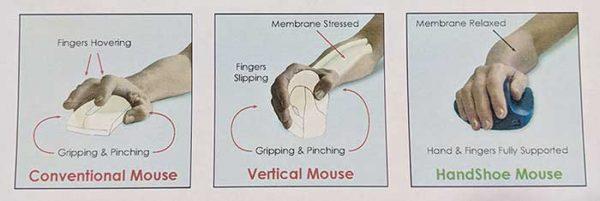 handshoe mouse 9