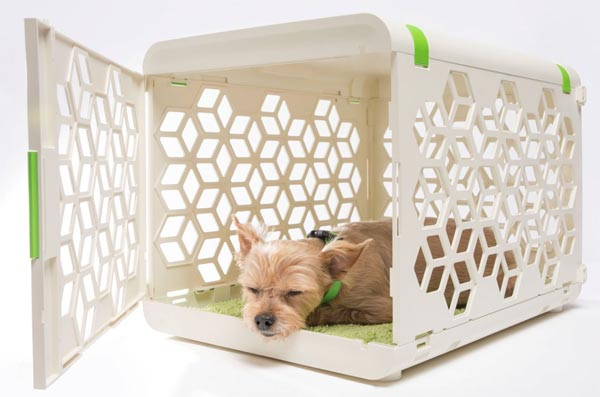 PAWD is a pet crate that doesn't look like a jail cell
