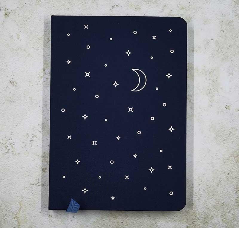 baronfig wander dream journal 2