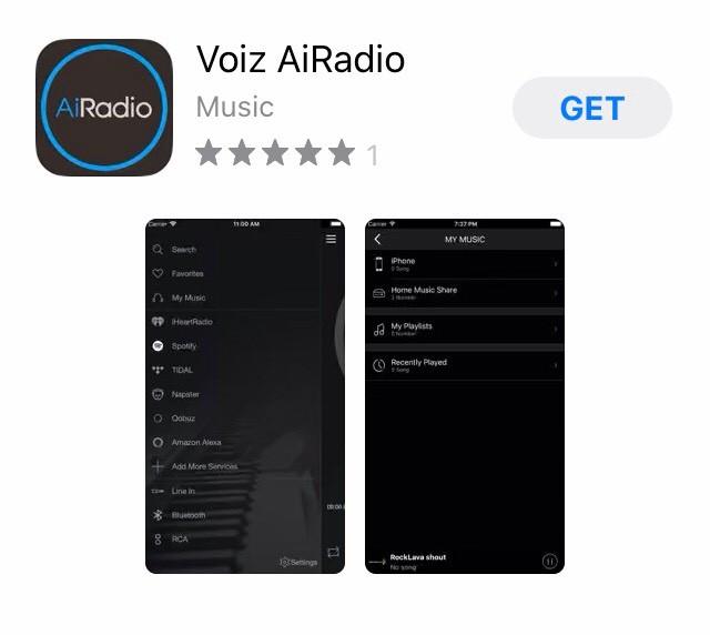 Voiz Speaker 4
