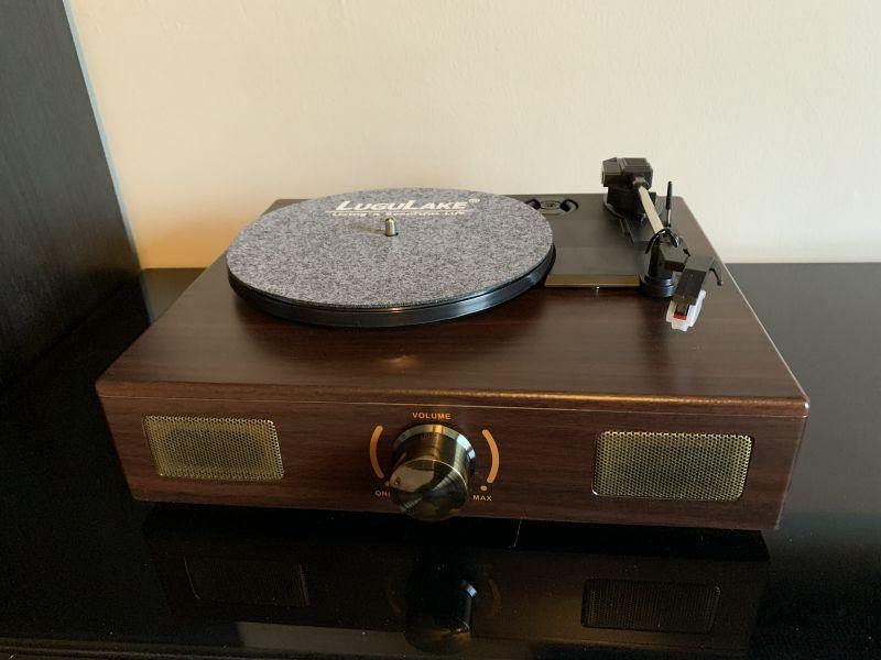 LuguLake Vinyl 1
