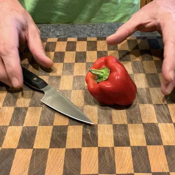 ArtisanRevere ParingKnife 14