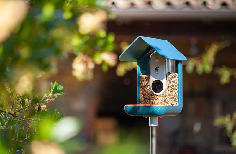 birdbooth 1