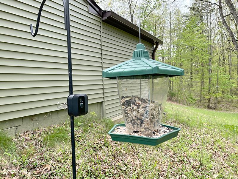 birdwatching camera